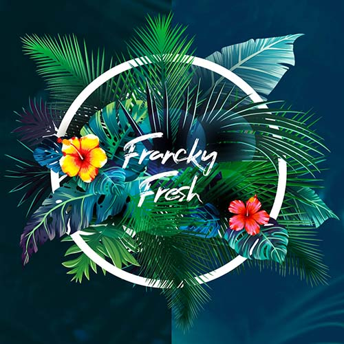 Francky Fresh – Fresh Deep Mix 500