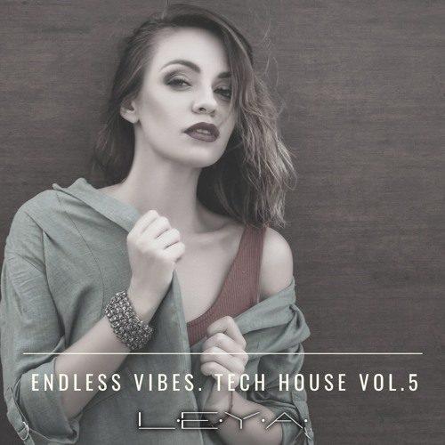 DJ Leya – Endless Vibes 05